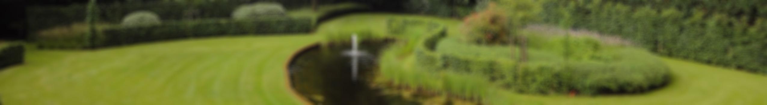 De-Tuinman-Tuinaanleg-en-Tuinontwerp-vaag