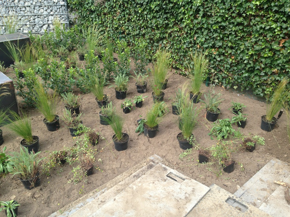 De tuinman ontwerpt en legt moderne tuinen aan for Moderne tuin aanleggen