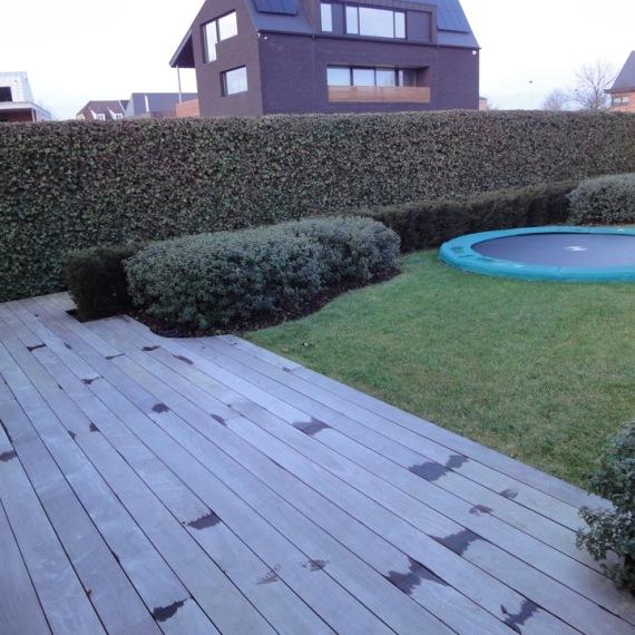 De Tuinman - aanleg landelijke tuin 16