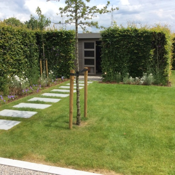 Ontwerp aanleg en onderhoud van tuinen dakterrassen for Ontwerp voortuin met parkeerplaats