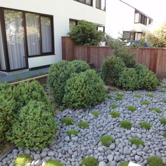 Magnifiek Foto's van tuinaanleg, bestrating, terrassen en vijvers #FO53