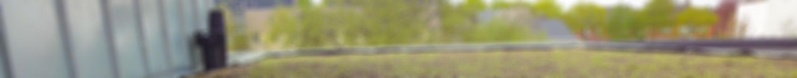 De-Tuinman-aanleg-van-groendaken-17